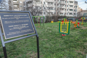 Home Drinka Pavlovic new playground